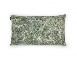 HAY-pillow filled with buckwheat huss-50x30 cm